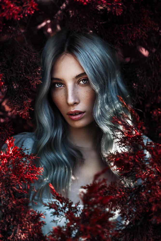 Sarah by Mikeila Borgia