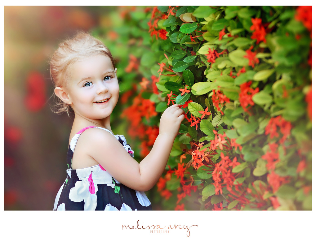 Picking Flowers by Melissa Avey