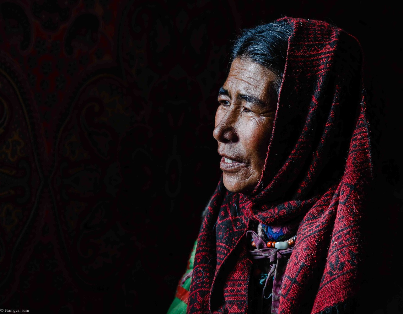 the nomads of 15000ft by Tashi Namgyal