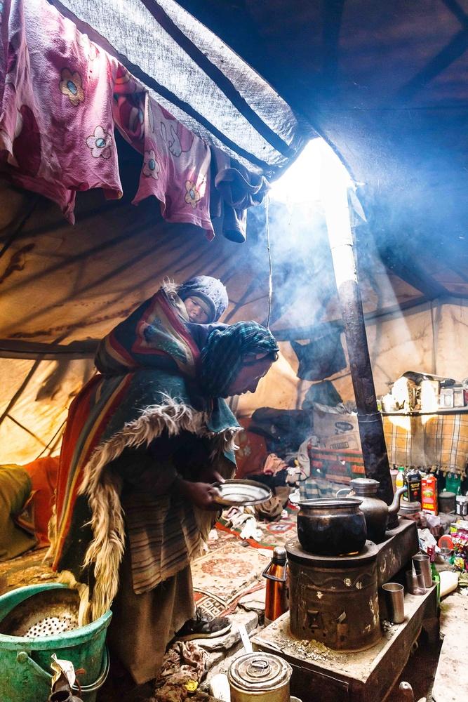 the nomads of Tibet-Ladakh by Tashi Namgyal