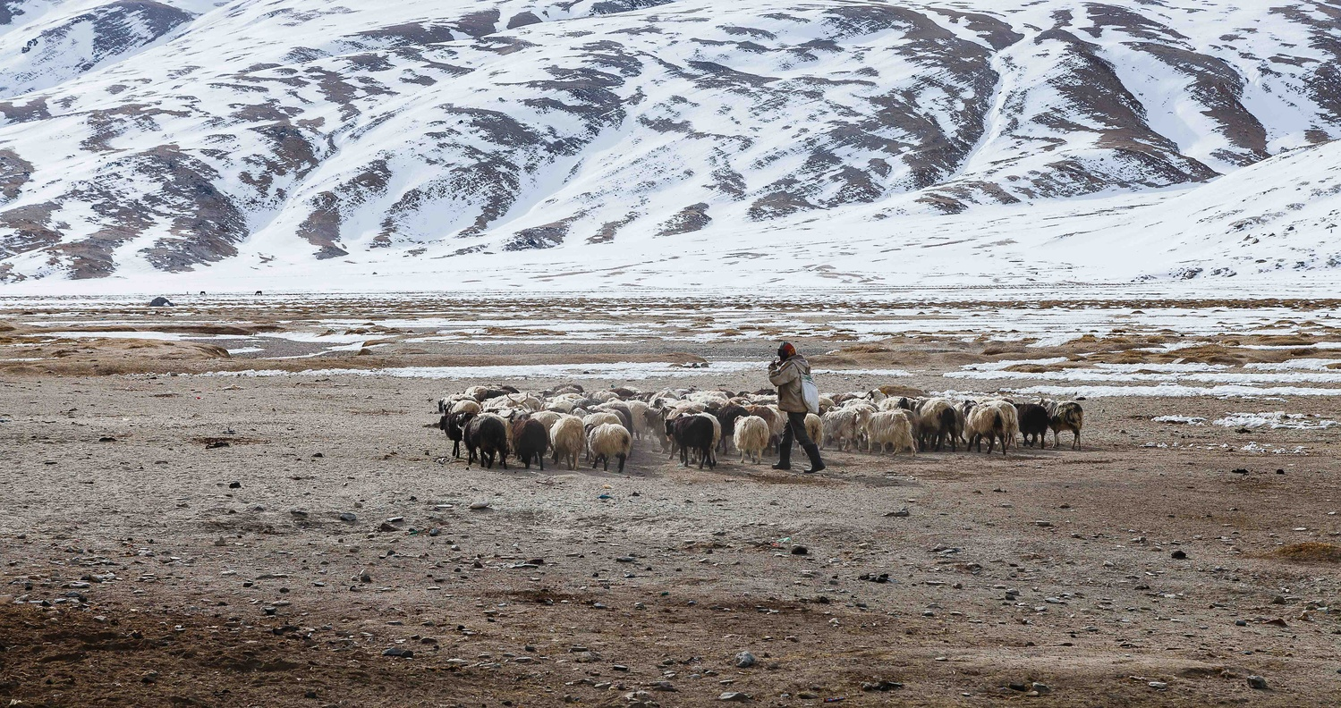 the nomads by Tashi Namgyal