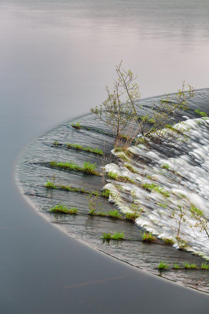 Circle of Life by Steffen Eidem