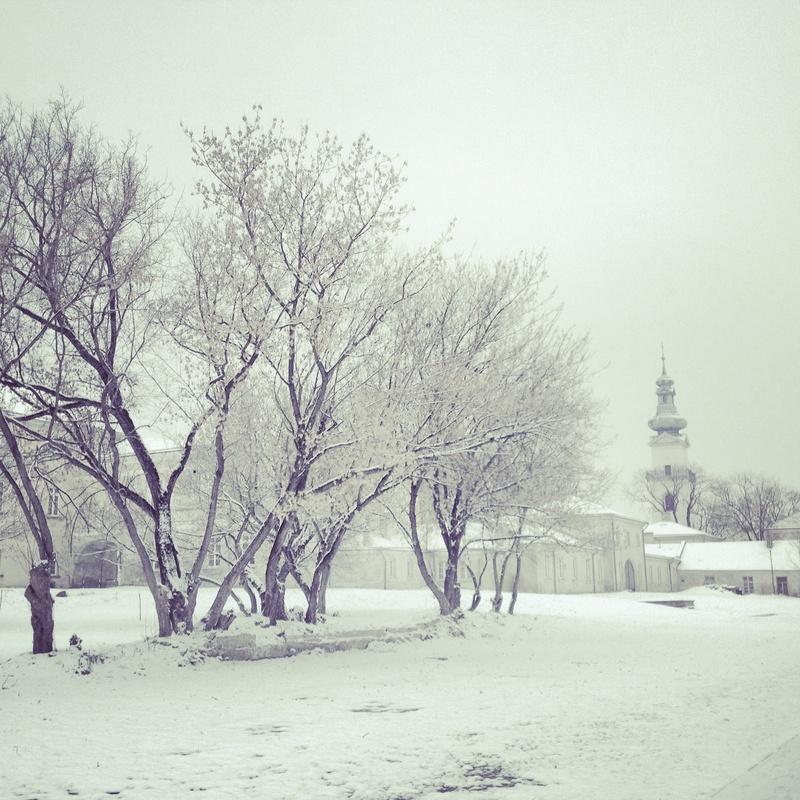 Winter by Agnieszka Brissey