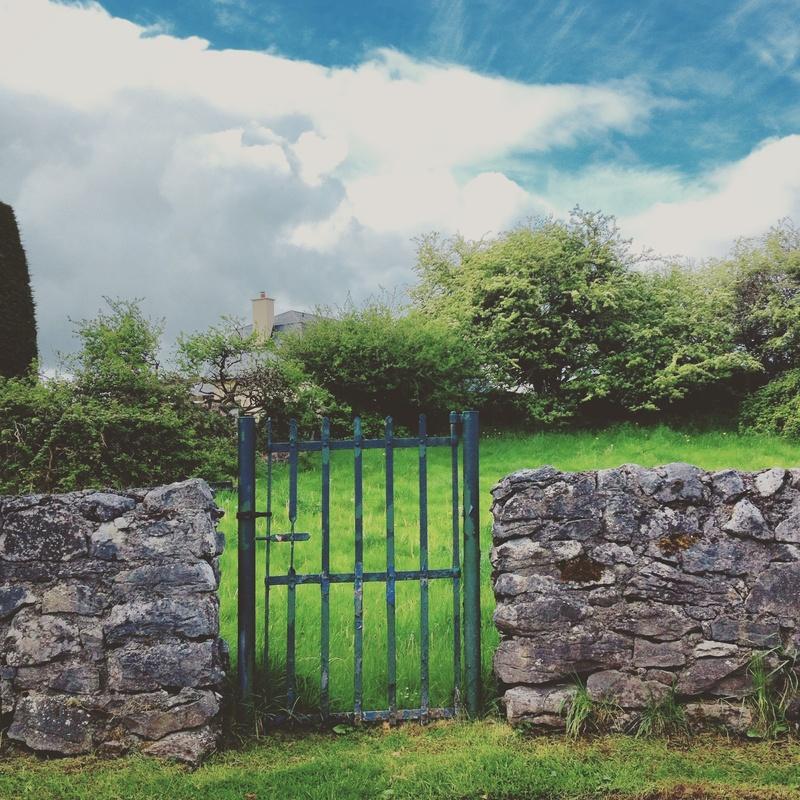 Gate by Agnieszka Brissey