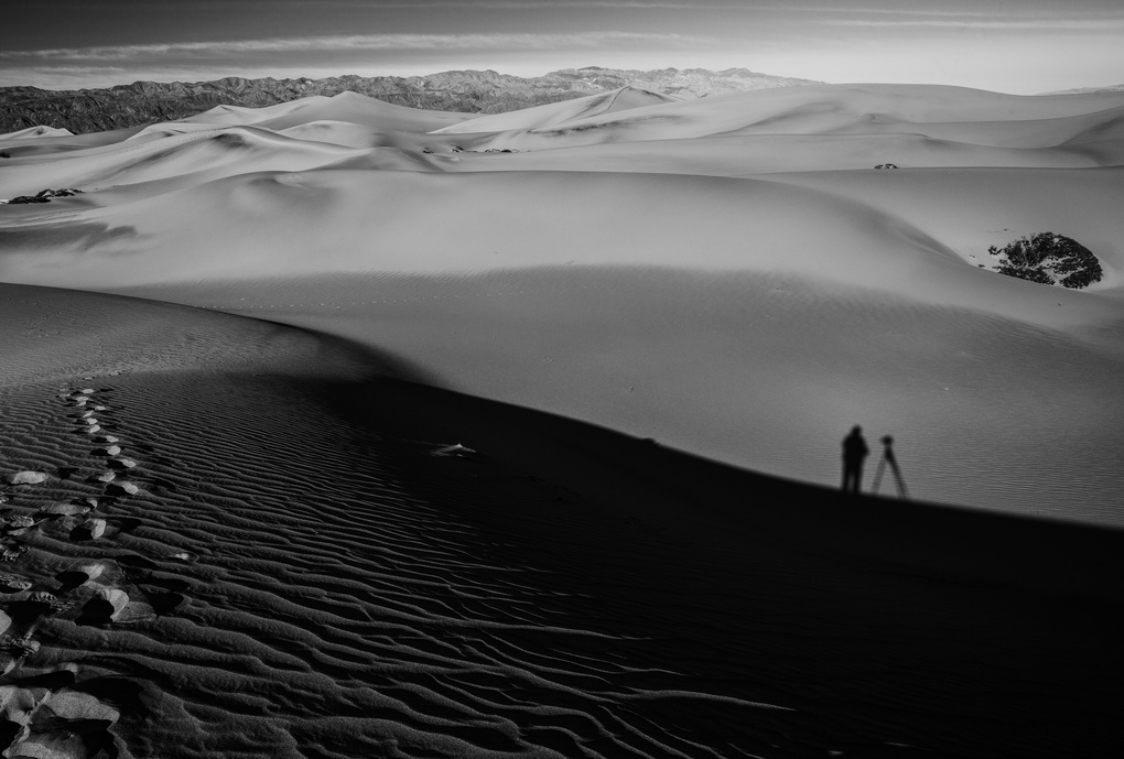 Portrait In The Sand by Brett Simpson