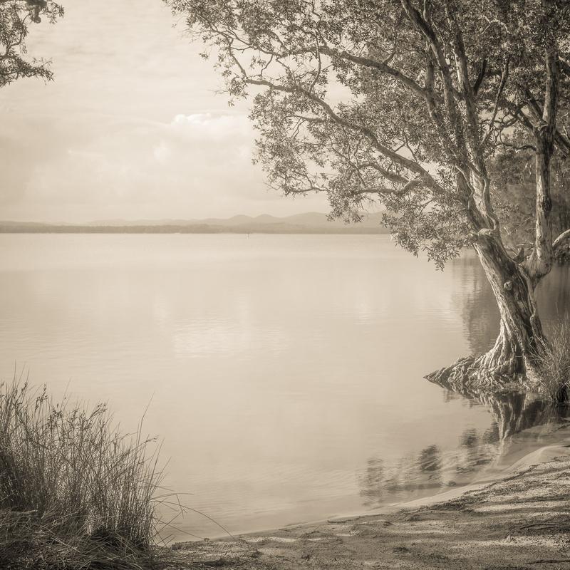 Mungo Brush by Len Metcalf