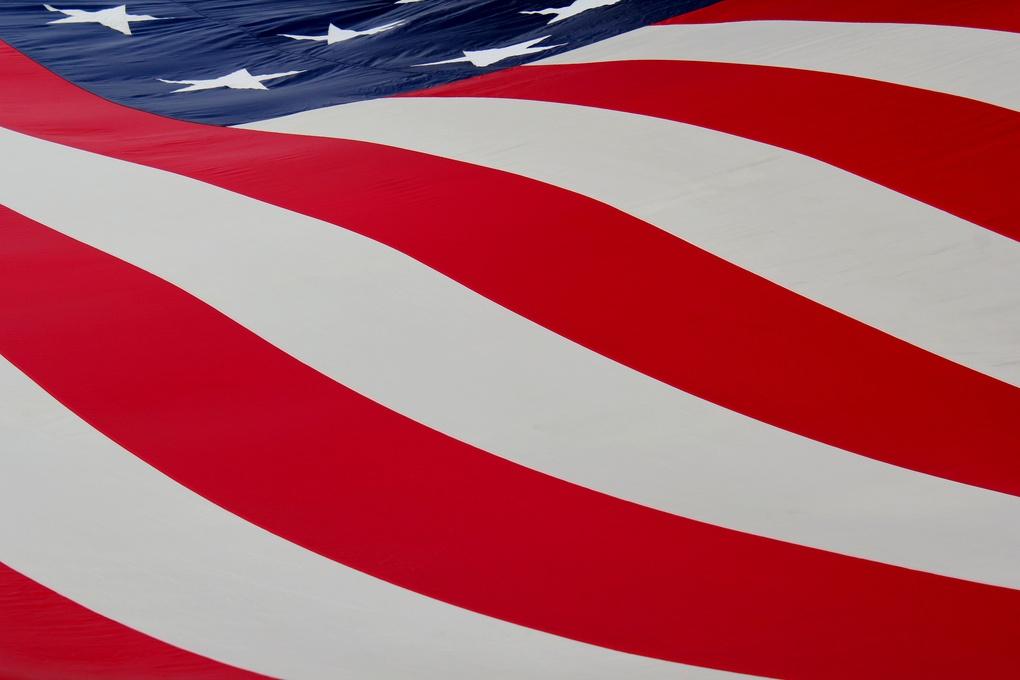 American Flag by Renee Olmsted