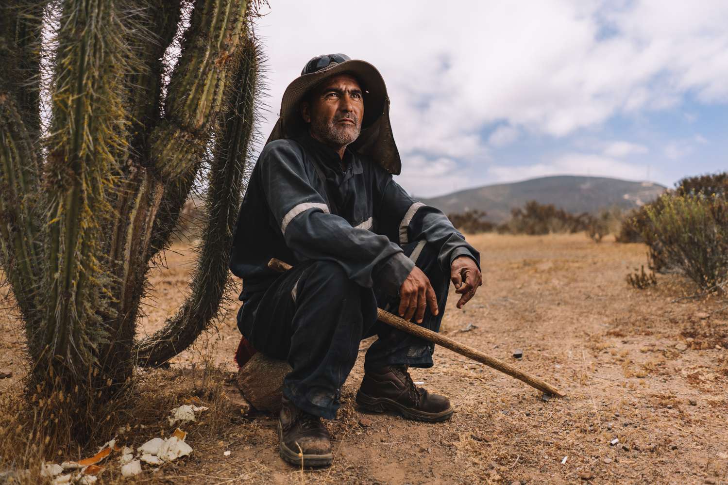 Far Shepherd by Sebastian Pinto