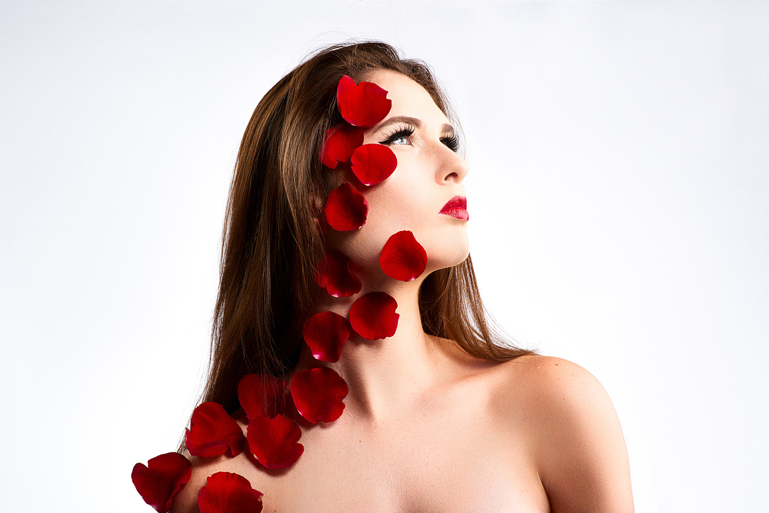 Red petals by Olivier Lannes