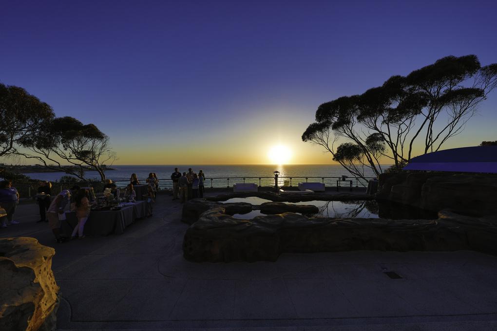 Sunset at the aquarium by q az