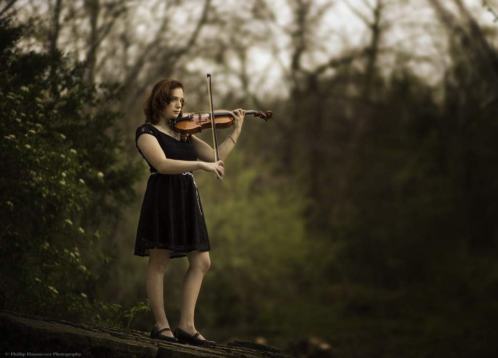 Music in High Places by Phillip Haumesser