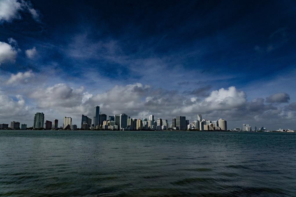 Miami Skyline by Olga Kolleeny
