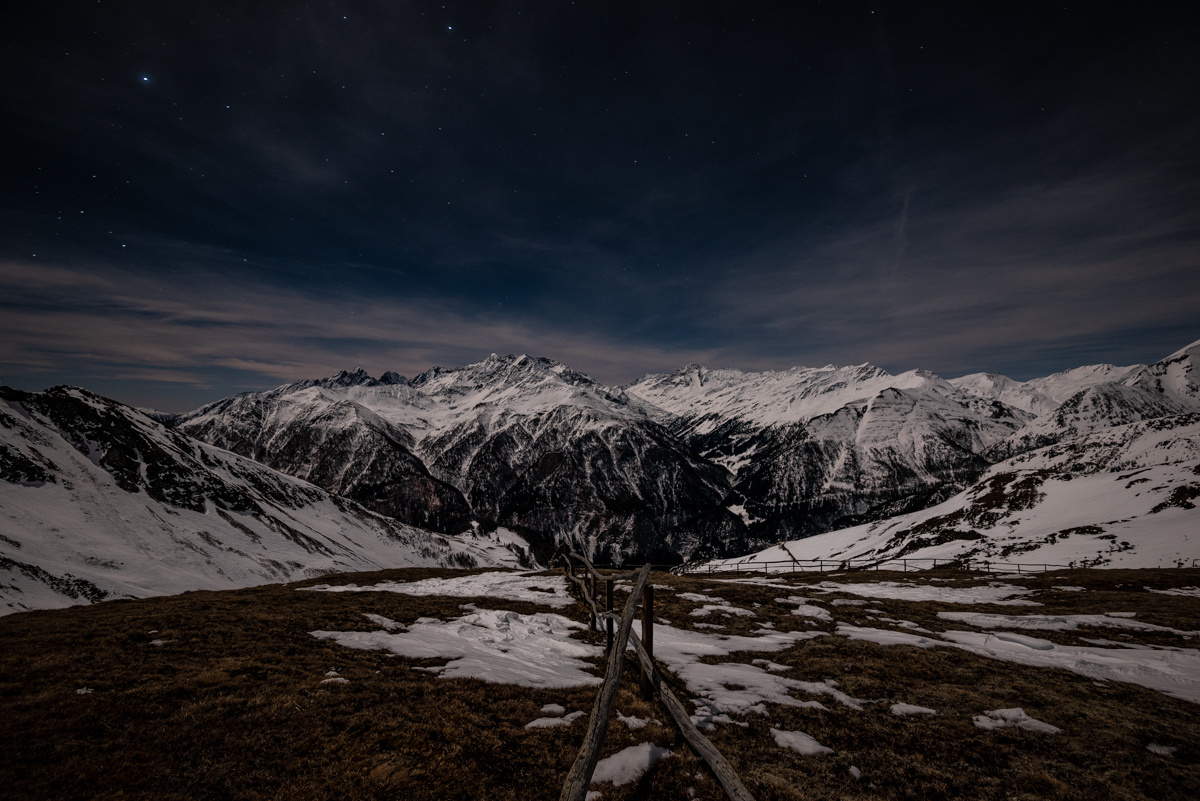 in the moonlight by Greg Cichecki