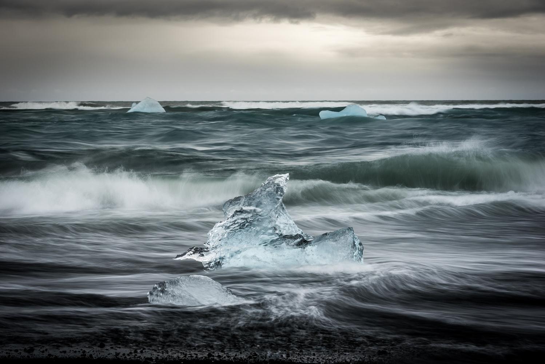ice swan by Greg Cichecki