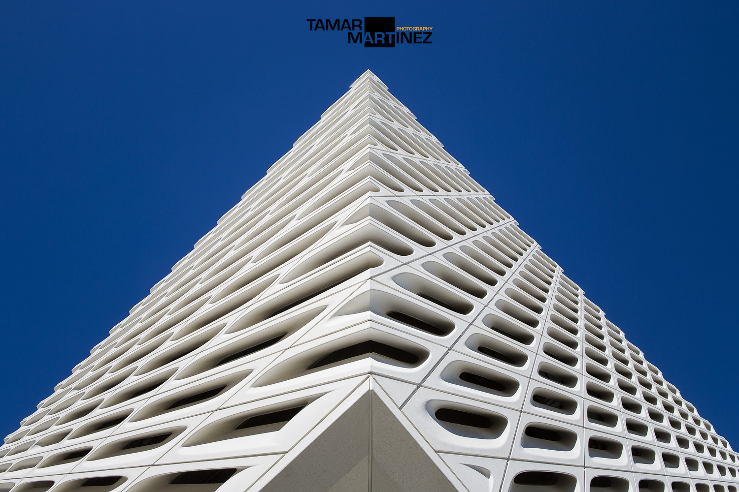 The broad by Tamar Martinez