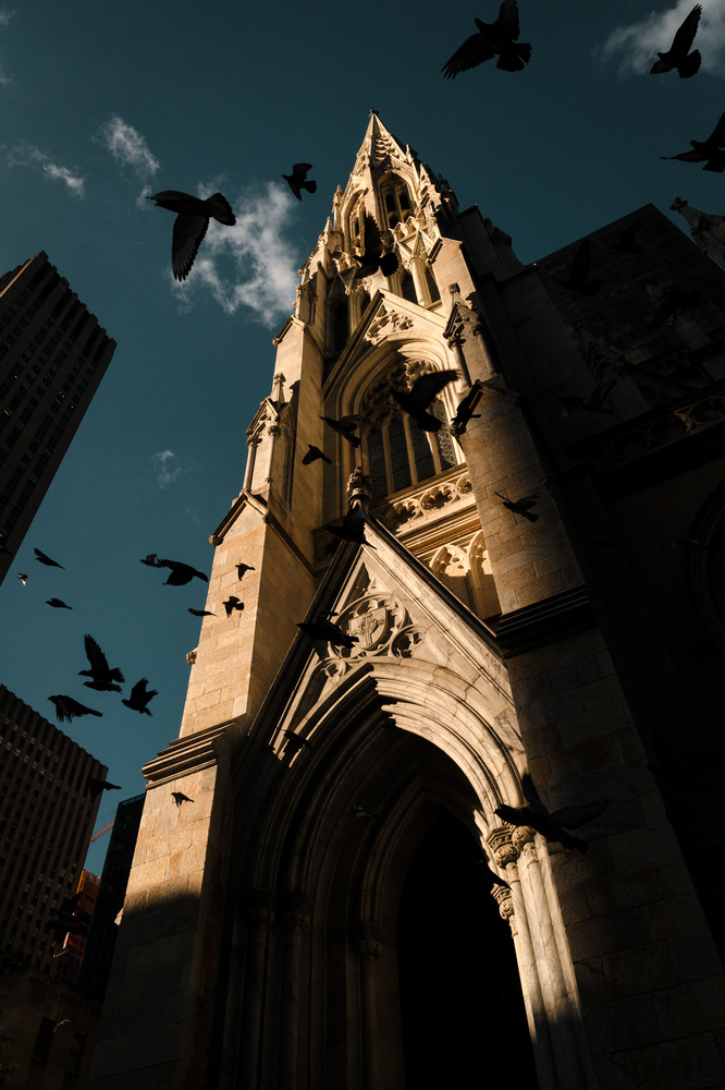 St. Patrick's Cathedral by Thomas Brablec