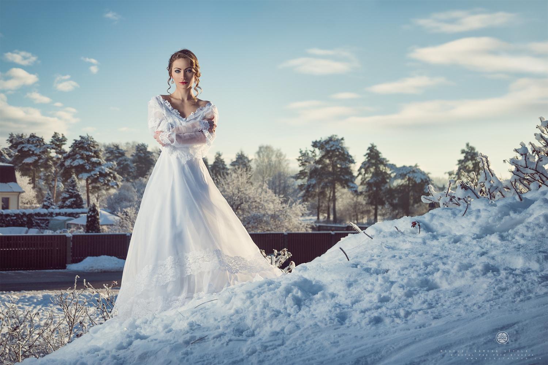 Frozen by Aivis Veide