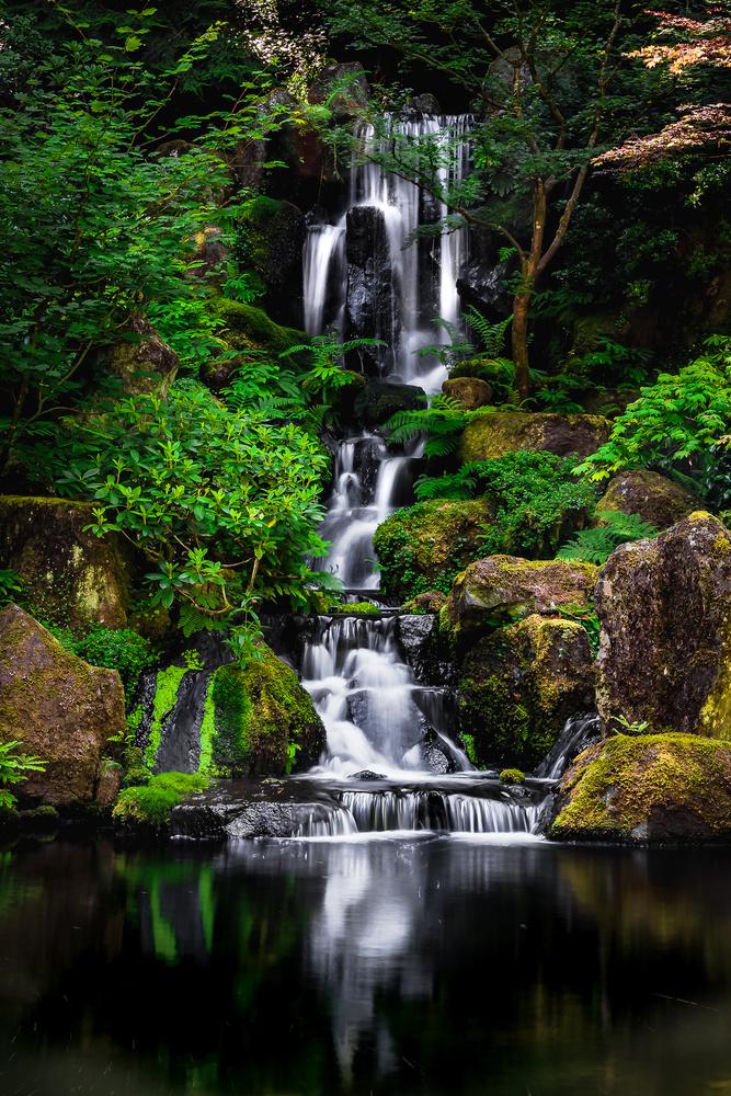 japanese gardens, portland, oregon by Ian Meyers
