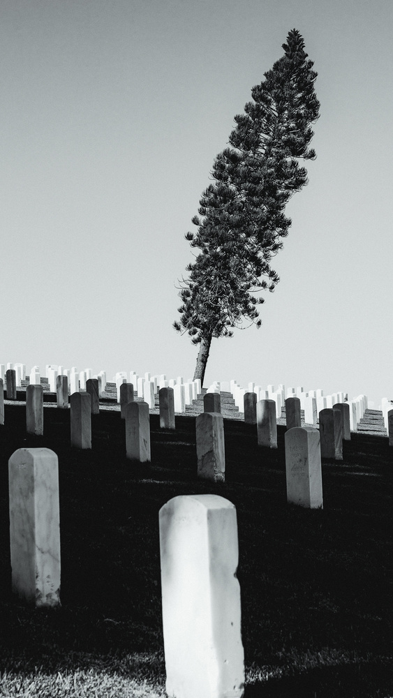 fort rosecrans cemetery, point loma, san diego, ca by Ian Meyers