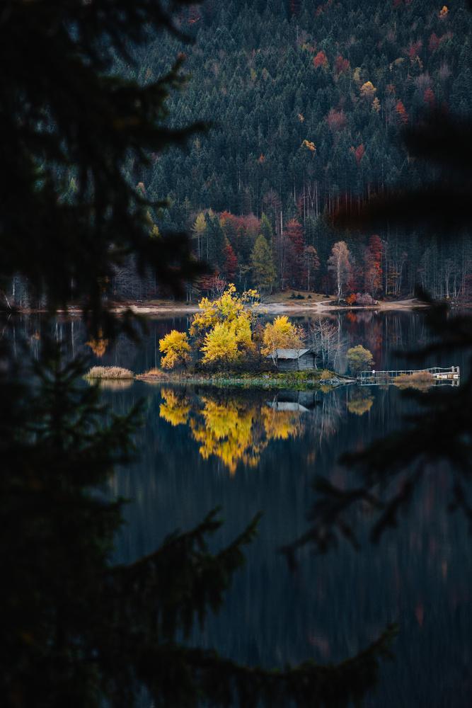 Shimmer of Autumn by Niko Brinkmann
