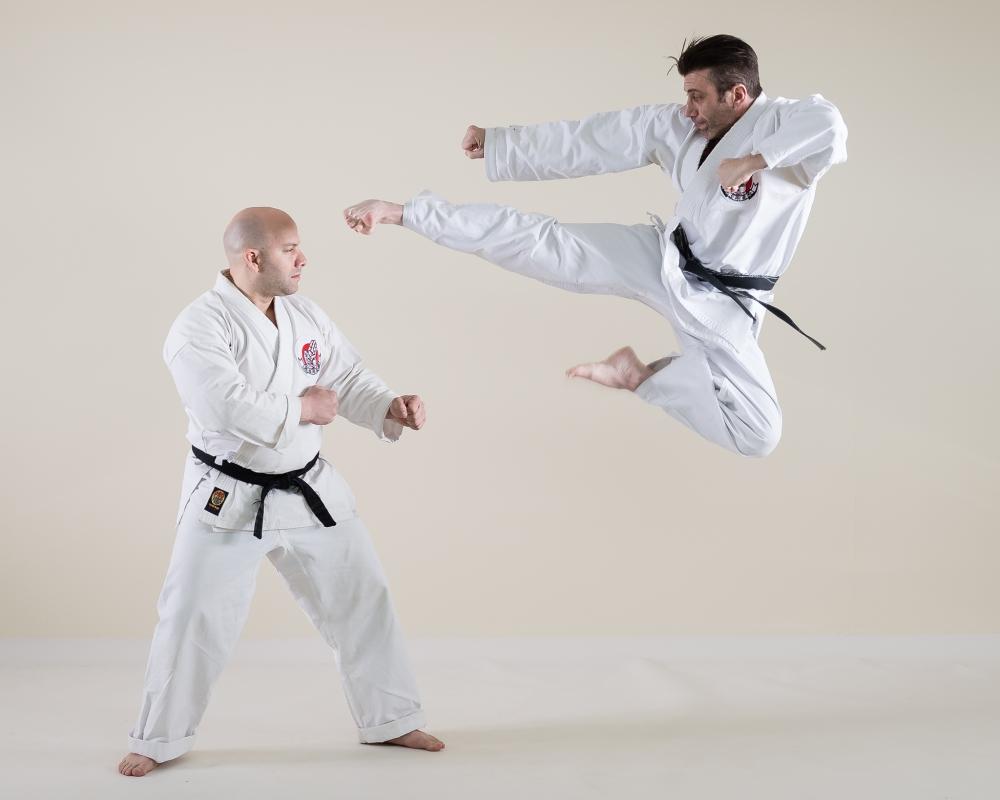 Jump Kick by Scott Wyden Kivowitz
