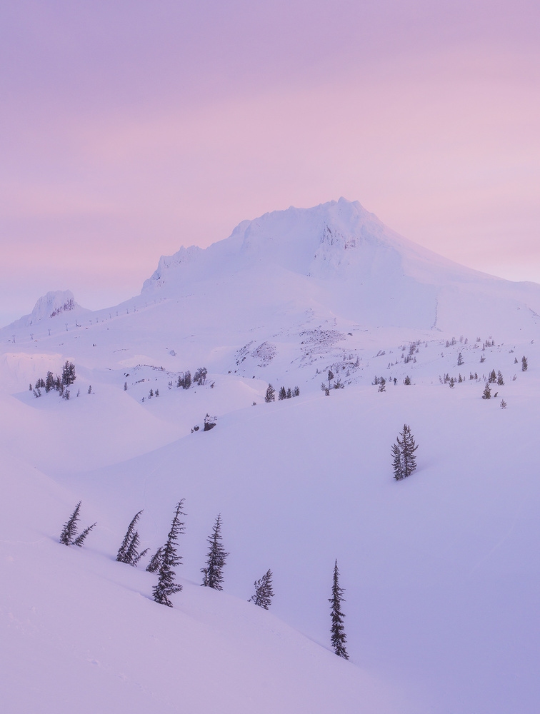 Timberline sunrise by Terence Leezy
