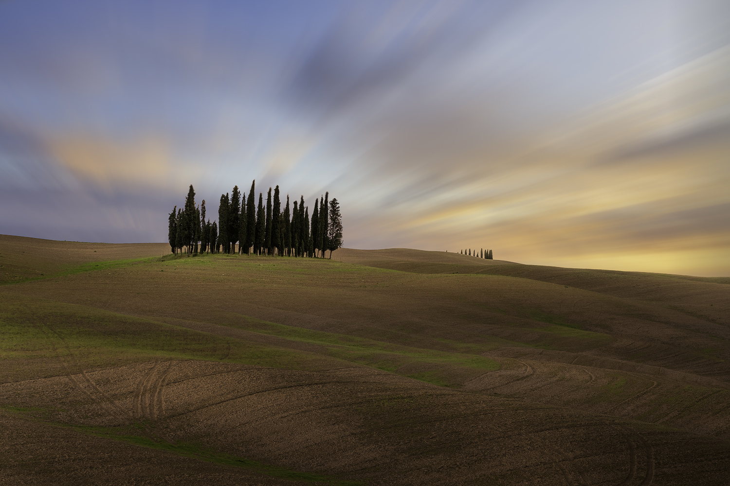 Tuscany Grove by Win Mag