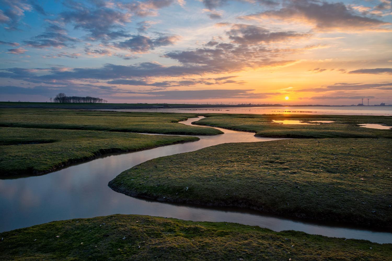 Salt Marsh Stream by Patrick Snitjer