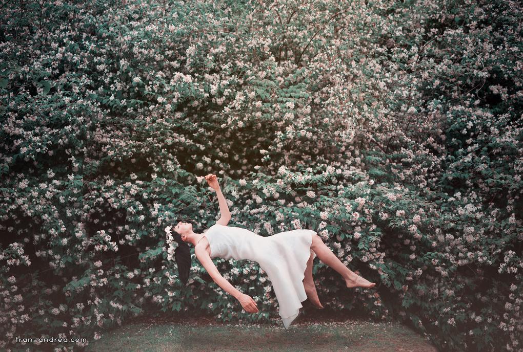 - Leggera, come un fiore di primavera - by Andrea Tran