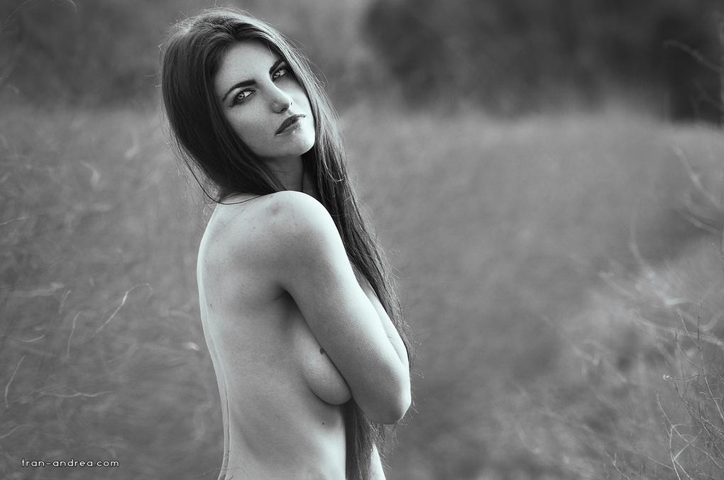 - Vibrant - by Andrea Tran
