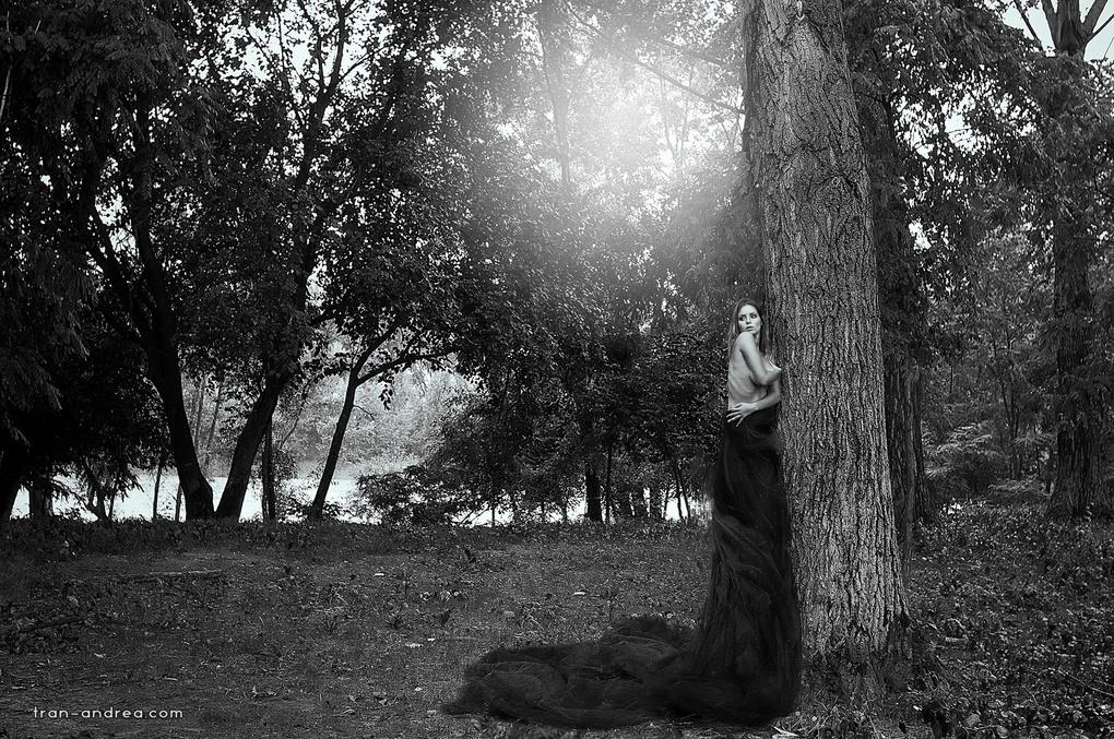 - Awakening - by Andrea Tran