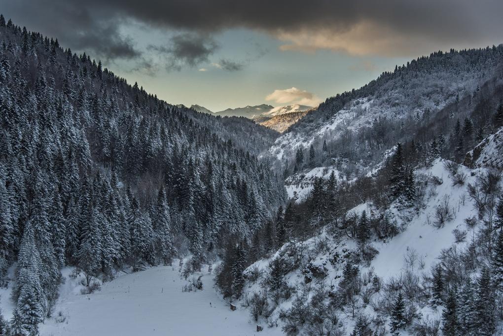 Winter solice by Marjan Petkovski