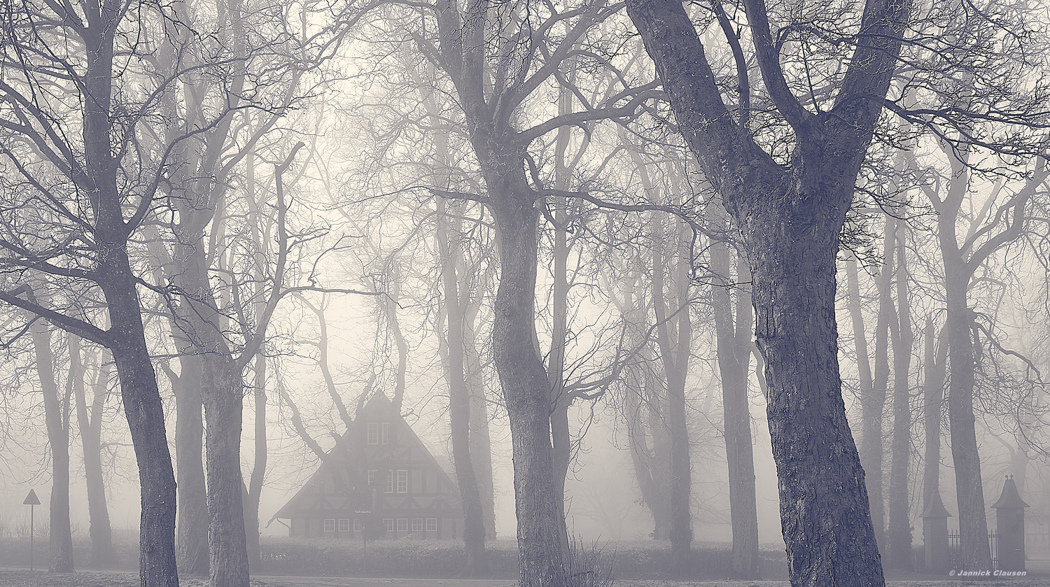 Foggy house in the woods by Jannick Clausen
