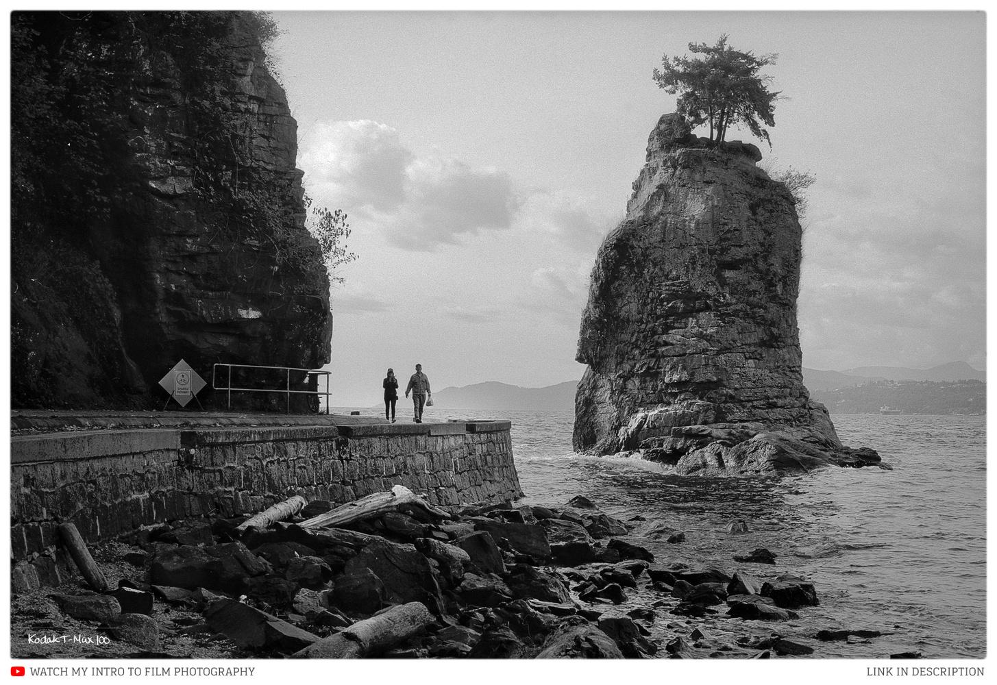 Siwash Rock, Vancouver by James Stevenson