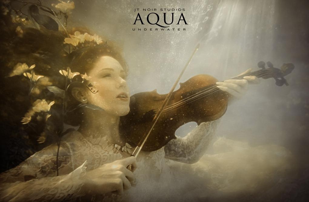 Underwater Violinist  by Jennifer Tallerico