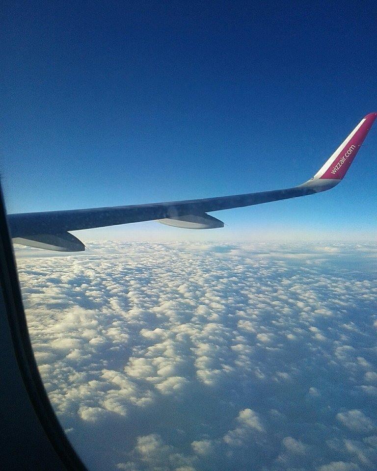 Airplane by Venessa Petkova