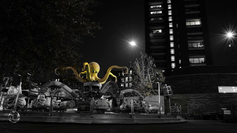 Octopus by Erick Van Rijswick