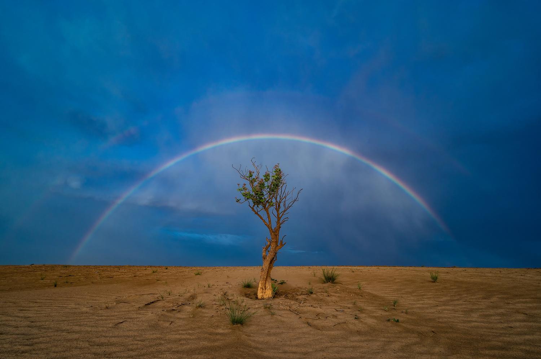 Triplet Rainbow by Babar Swaleheen