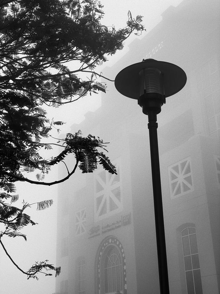 Foggy Morning by Babar Swaleheen