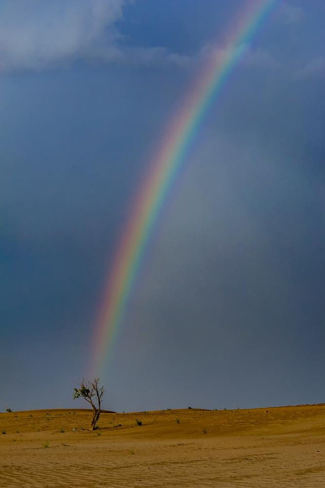 Rainbow & Nature by Babar Swaleheen