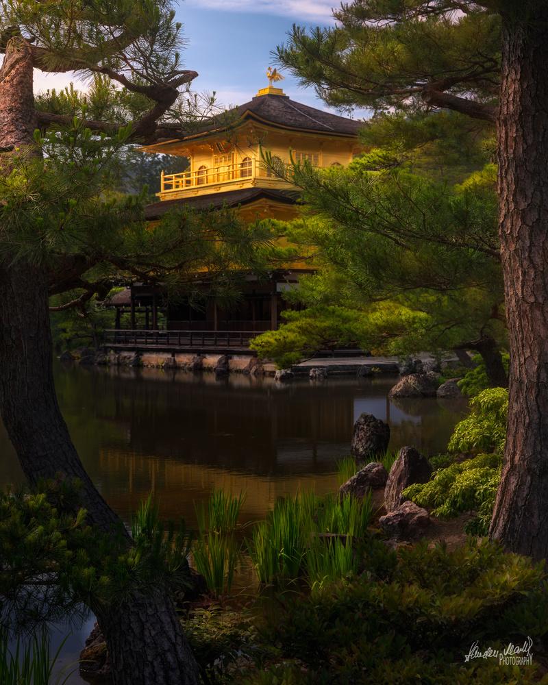 Zen by SANDEEP MATHUR