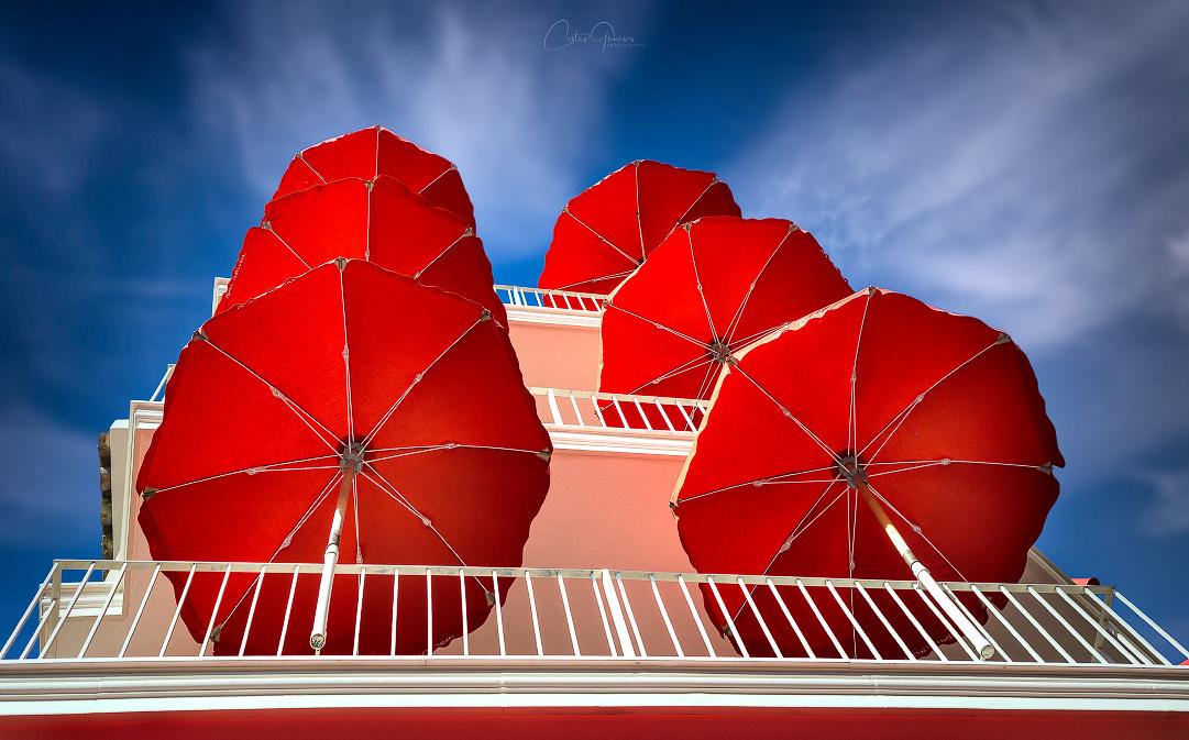 Love Red by Costas Ganasos