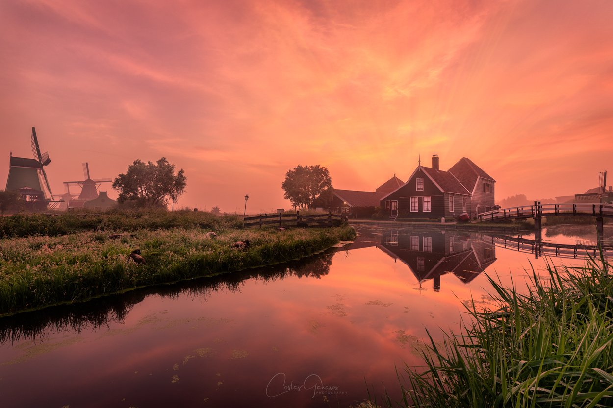 Beautiful Holland by Costas Ganasos
