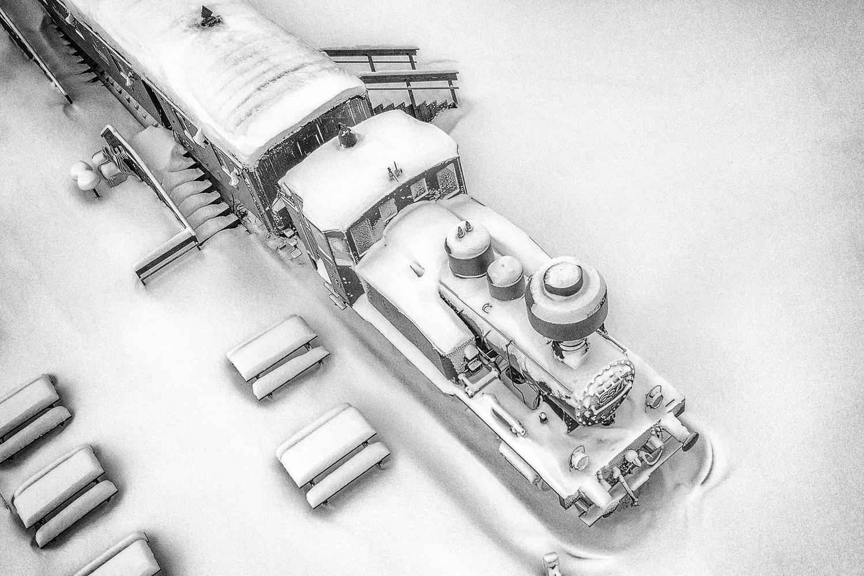 Frozen Business by Carl Irjala