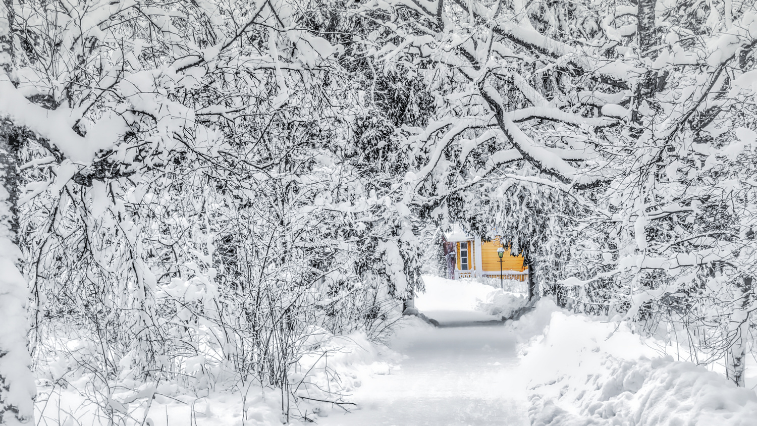 Surrounded by Snow by Carl Irjala