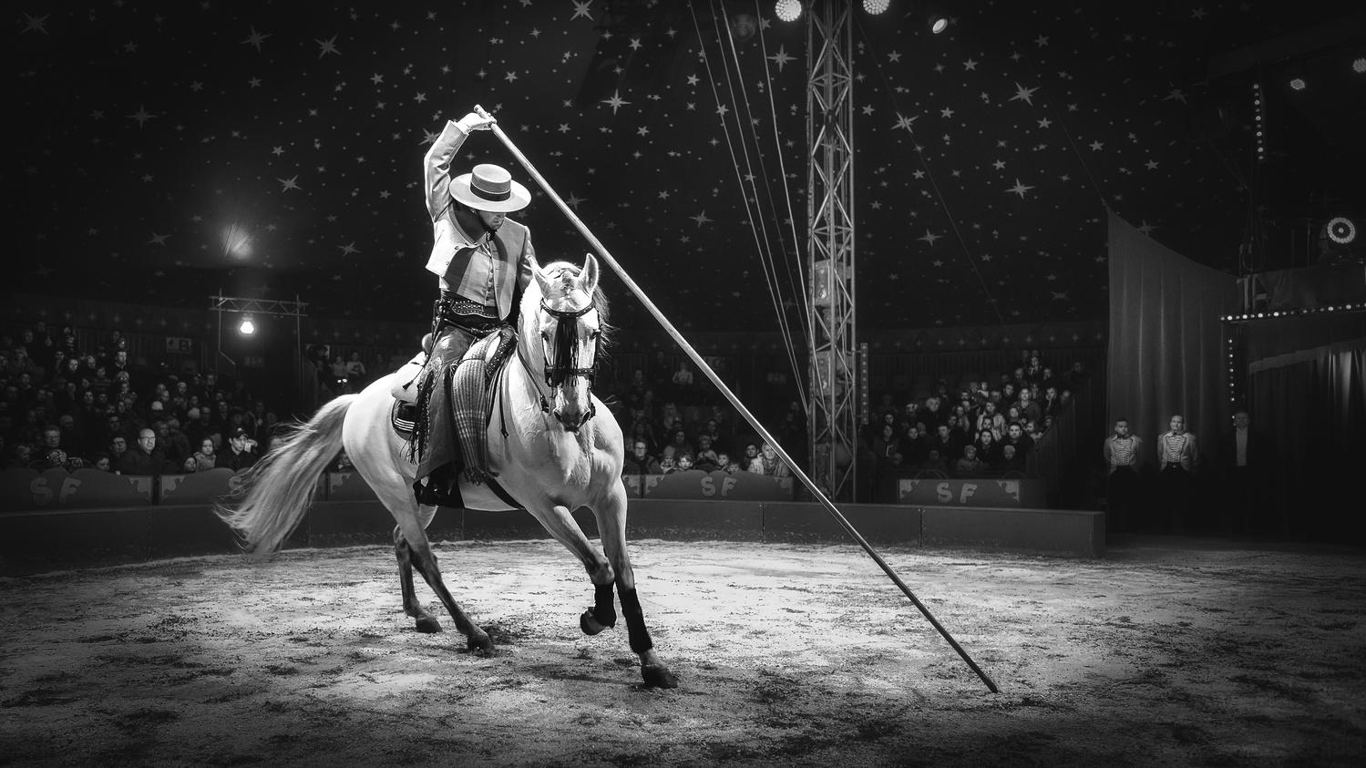 The Circus Artist by Carl Irjala