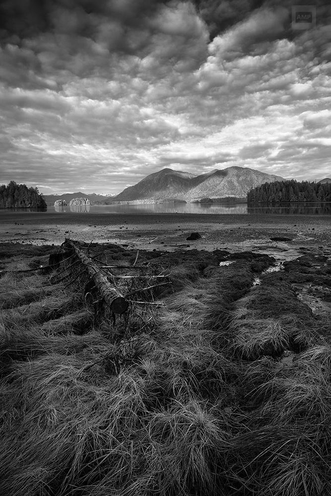 Inlet - Tofino, British Columbia by Alan McCord