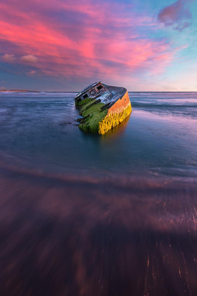 Pisces Star Shipwreck by Kieran Stone