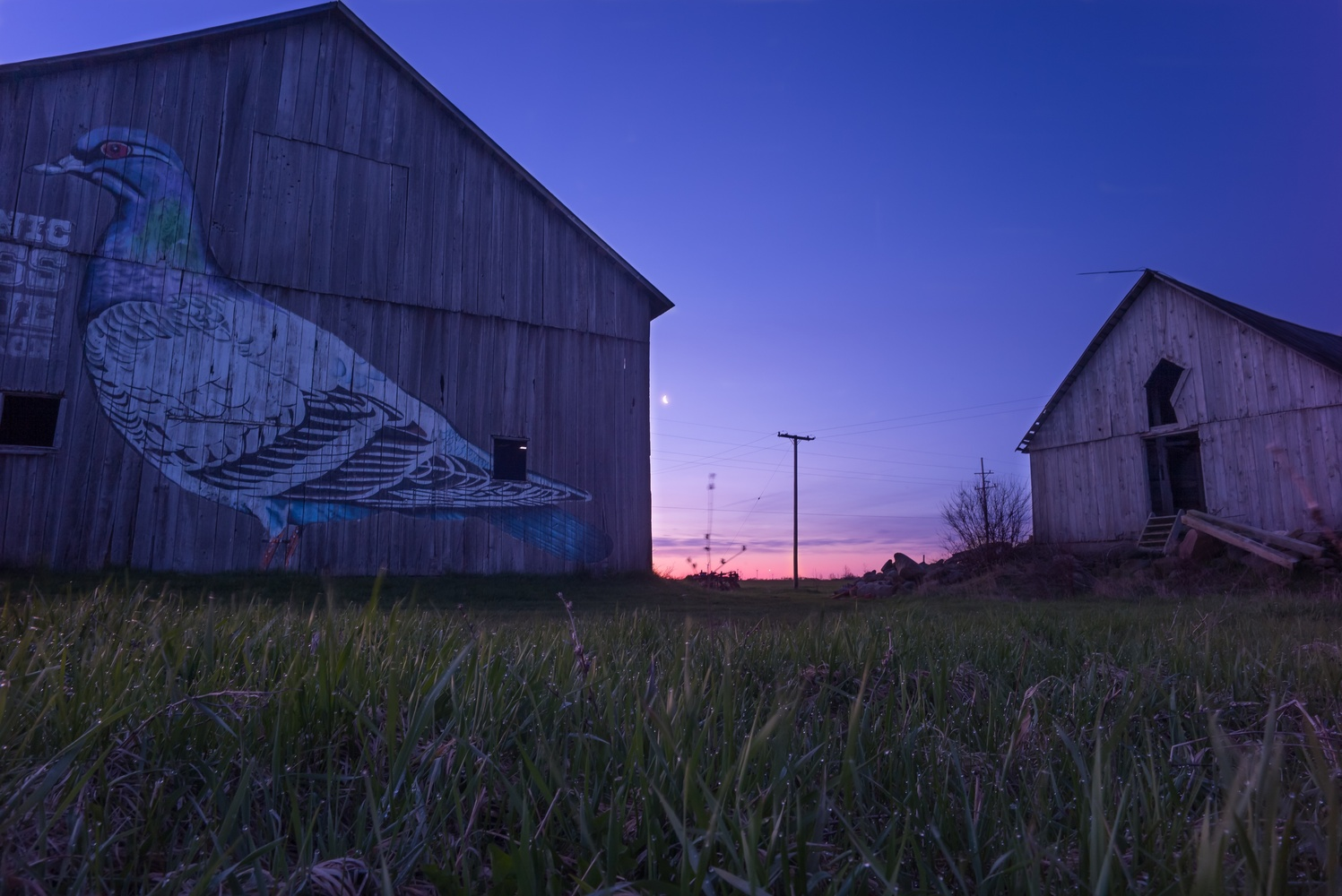 Barn art by Doc M