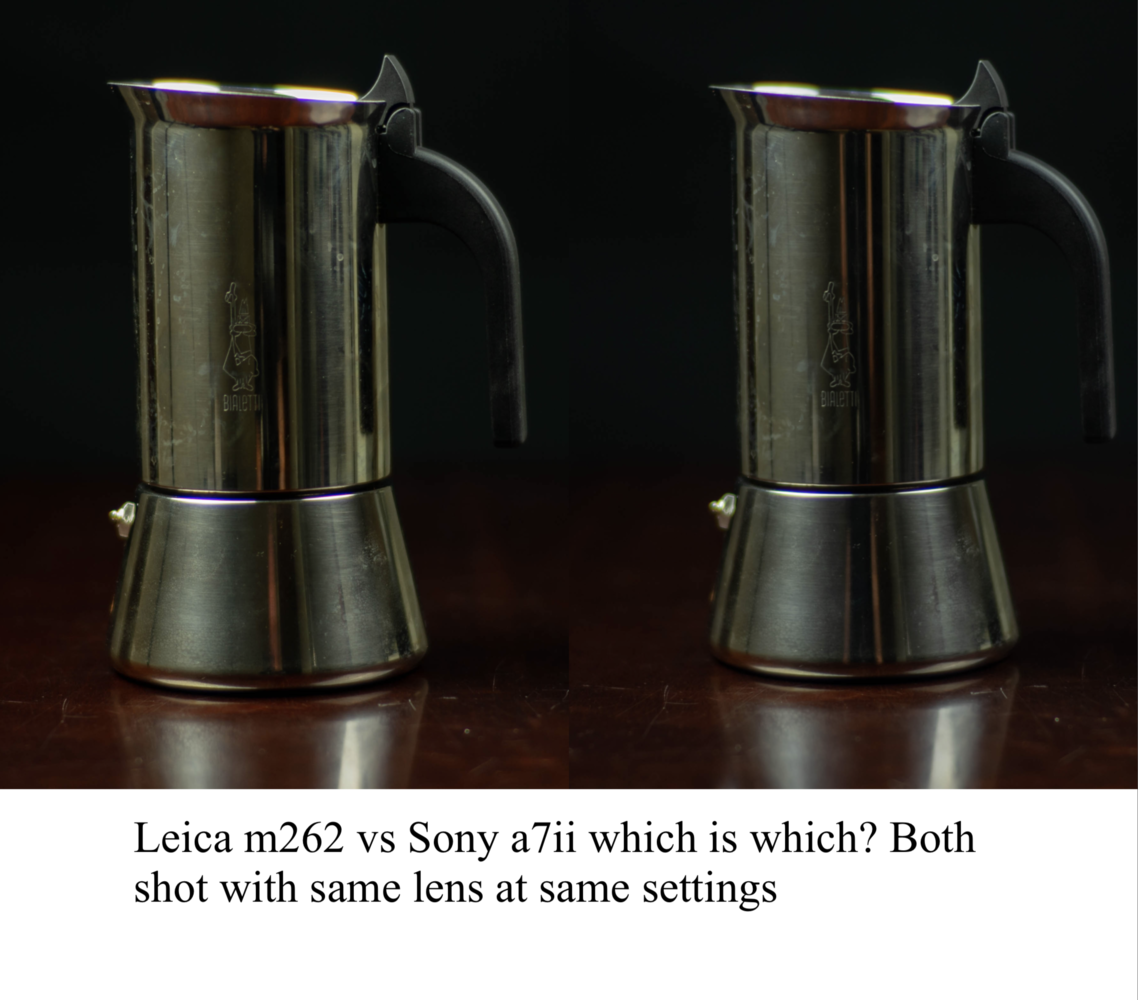 leica vs sony by Doc M